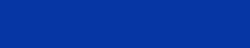 EVONA Electronic Logo